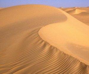 padang-pasir