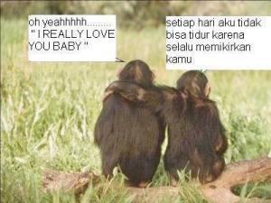 Cinta_Monyet